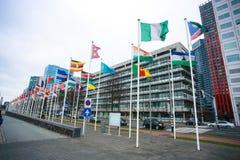 Rotterdam pejzaż miejski Obraz Royalty Free