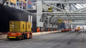 Container shipping port industry. ROTTERDAM, SEP 6, 2013: Automated Guided Vehicles moving shipping containers to and from gantry cranes in a port container stock images