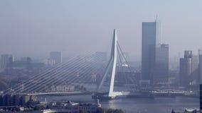 Rotterdam skyline and the Erasmus Bridge stock footage