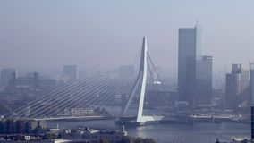 Rotterdam-Skyline und Erasmus Bridge stock footage