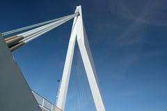 Rotterdam-Stadtstadtbild mit ERASMUS-Brücke, Südholland, die Niederlande Stockfoto