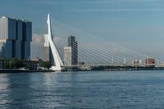 Rotterdam-Stadtstadtbildskyline mit ERASMUS-Brücke und -fluß Südholland, die Niederlande Stockfotografie