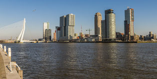 Rotterdam Wilhelminapier Bridge and Shores Stock Photo