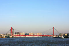 Rotterdam and Willems Bridge Stock Photography