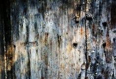 Rottig och knäcka träbackgroud Arkivfoton