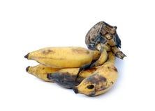 Rotting banana. Isolated on white Stock Photos
