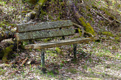 A rotting bench in the middle of the woods Royalty Free Stock Images