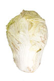 Rotting cabbage on white. Background Royalty Free Stock Photos