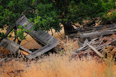 Rotting Debris Royalty Free Stock Photography