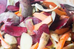 Rotting kitchen fruits and vegetable scraps stock image