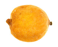 Rotting lemon. A lemon that is shriveling and rotting on a white background Royalty Free Stock Images