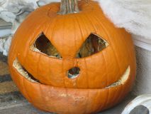 A rotting old pumpkin seems to hold an ominous secret. A rotting old orange carved pumpkin with slanted eye openings and a grimacing mouth, that suggests, there stock photos