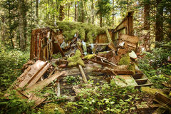 Rotting Old Shed In Forest Stock Photos