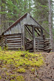 Rotting old traditional Yukon taiga log cabin ruin Royalty Free Stock Photography