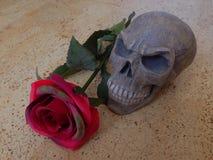 Rotting Rose Stock Photo
