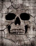 Rotting skull. Grunge spooky skull background with various cracks Stock Image