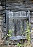 Rotting wooden door royalty free stock photo
