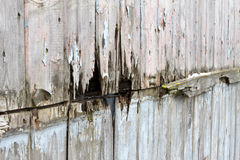 Rotting wooden panels Stock Photo