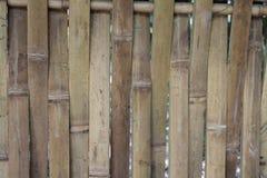 rottingen colors den naturliga väggen för rørskuggaverticalen Royaltyfri Fotografi