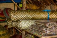 Rottingprodukter i Kedah royaltyfri foto