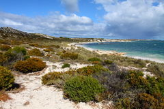 rottnest Australia wyspa zdjęcie stock