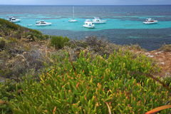 Rottnest Island Royalty Free Stock Photo