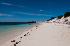 Rottnest Island Beach Royalty Free Stock Images
