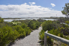Rottnest Lake Landscape. Path to coastal lake at Rottnest Island with lush, native flora under a blue sky with clouds in Western Australia Royalty Free Stock Image