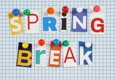 Rottura di primavera fotografia stock libera da diritti
