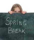 Rottura di primavera fotografia stock