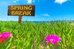 Rottura di primavera scritta su un segno di legno fotografia stock libera da diritti