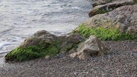 Rottura di vrlna del mare circa le pietre archivi video