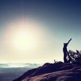 Rottura sul picco roccioso Albero selvaggio rotto dei bonsai del pino Fotografie Stock
