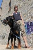 Rottweiler, açaime e homem Imagens de Stock Royalty Free
