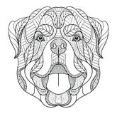 Rottweiler dog zentangle, doodle stylized head, hand drawn, pattern. Zen art. Ornate vector. Black and white illustration on white Royalty Free Stock Images
