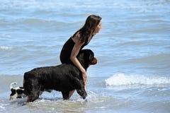 Rottweiler e ragazza nel mare Fotografia Stock Libera da Diritti