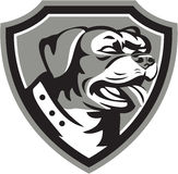 Rottweiler Guard Dog Shield Black and White Royalty Free Stock Image