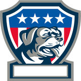 Rottweiler Guard Dog USA Flag Crest Retro. Illustration of a Rottweiler Metzgerhund mastiff-dog guard dog head looking to the side set inside shield crest with Royalty Free Stock Photos