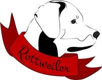 Rottweiler Head Royalty Free Stock Photo
