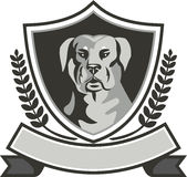 Rottweiler Head Laurel Leaves Crest Black and White Stock Photography