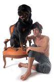 Rottweiler and man Royalty Free Stock Image