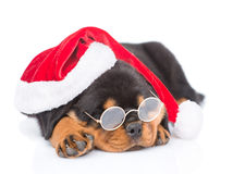 Rottweiler puppy with glasses and red santa hat. isolated on white Stock Photo