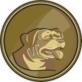 Rottweiler-Schutz-Dog Head Gold-Medaillon Retro- Stockfoto