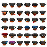 Rottweilers Dog Emoji Emoticon Expression Stock Photography
