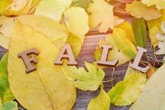 A rotulação da queda do amarelo de madeira das letras sae no fundo Imagem de Stock Royalty Free