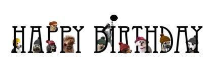 Rotulação do feliz aniversario com cães ilustração royalty free