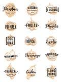 Rotulação exótica do esboço do vetor dos frutos ilustração royalty free