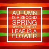 Rotulando Autumn Banner Postcard sazonal Fotos de Stock
