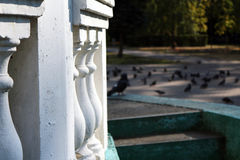 Rotunda en parc Images stock