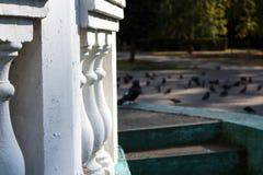 Rotunda no parque Imagens de Stock